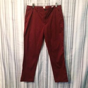 Gap Girlfriend Chino for Career in Maroon Size 10